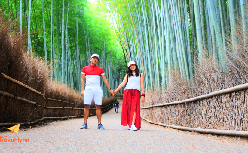 DIY Japan Itinerary (Nagoya – Kyoto –Nara)